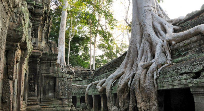 angkor24w800h438 Siem Reap 3 Day Private Tour